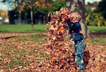 toddler playing in leaf pile - how free do you want to be - moonlight workshops - jean campbell